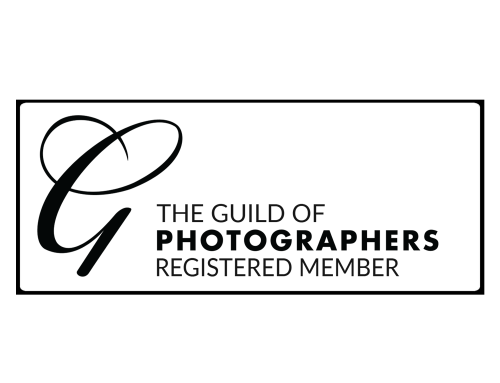 'The Guild'
